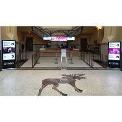 Внутреннее телевидение Indoor TV в офисных центрах и культурных центрах